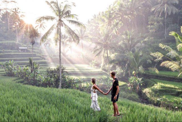 Pirincana polja Bali Indonezija Disko Drugar