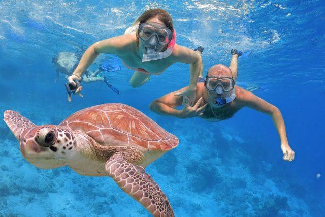 snorkeling sa morskim kornjacama Bali