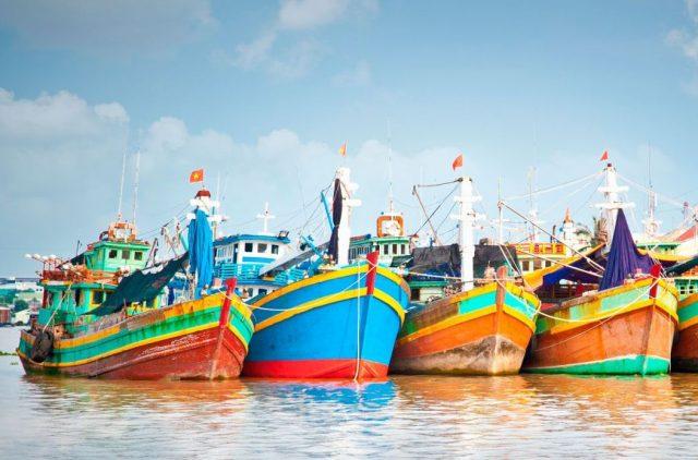 Delta reke Makong Vijetnam